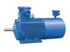 YBPT(355~560)隔爆型变频调速三相异步电动机