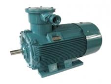 YBD(80~280)隔爆型变极多速三相异步电动机