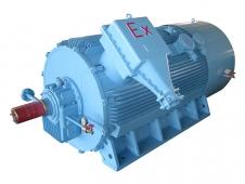YB2系列紧凑型高压隔爆型三相异步电动机(355~560)